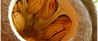 орехи внутри