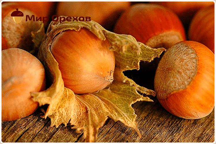 Для чего полезны орехи фундук