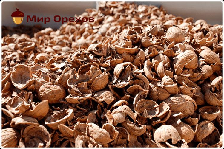 Скорлупа грецких орехов лечебные свойства и противопоказания
